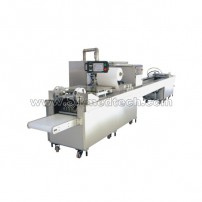 Automatic syringes packing Machine